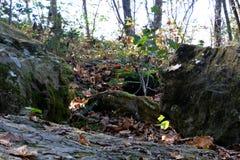 Stenig terrain Royaltyfri Foto