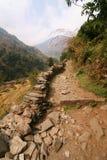 stenig trail för berg Arkivbilder