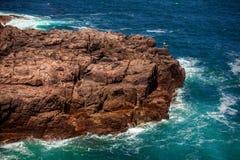 Stenig utlöpare i havet Arkivbilder