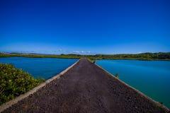 Stenig väg i den Rangitoto ön i Auckland, i en solig dag med en härlig blå himmel som korsar havet Fotografering för Bildbyråer