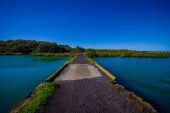 Stenig väg i den Rangitoto ön i Auckland, i en solig dag med en härlig blå himmel som korsar havet Royaltyfri Foto