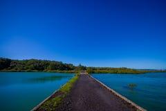 Stenig väg i den Rangitoto ön i Auckland, i en solig dag med en härlig blå himmel som korsar havet Royaltyfria Bilder