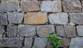 Stenig vägg Royaltyfri Bild