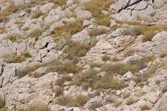 Stenig vildmark på ön av Pag i Kroatien Arkivfoto