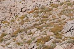 Stenig vildmark på ön av Pag i Kroatien Fotografering för Bildbyråer