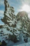 Stenig vintersol Arkivfoton
