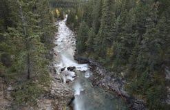 Steniga berg för Athabasca flod Arkivbilder