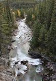 Steniga berg för Athabasca flod Royaltyfri Fotografi