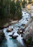 Steniga berg för Athabasca flod Arkivfoto