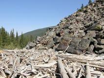 Steniga berg i Alberta, Kanada Arkivbilder