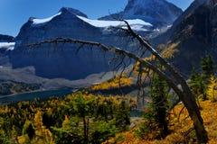Steniga berg i nedgången Arkivfoton