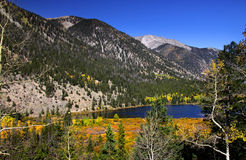 steniga colorado berg Royaltyfri Fotografi