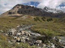 steniga forlorn berg för creekin arkivfoto