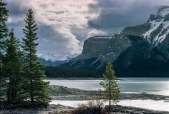 steniga kanadensiska berg royaltyfria bilder