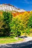 Steniga klippor över skogen Royaltyfri Bild