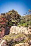 Steniga klippor seglar utmed kusten med gröna träd, och murgrönan blommar Arkivbild