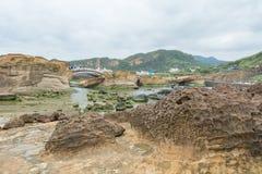 Steniga shorelinedragningar Royaltyfria Bilder