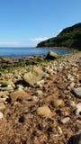 1 steniga strand Royaltyfri Bild