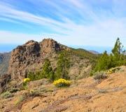 Stenigt berg av den Gran canaria ön Royaltyfri Foto