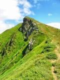Stenigt berg i sommar Royaltyfria Bilder