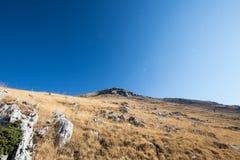 Stenigt berg med gula gräsfält och blå himmel i baksidan Arkivbild