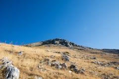 Stenigt berg med gula gräsfält och blå himmel i baksidan royaltyfri fotografi
