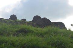 stenigt berg med mycket gräsplangräs runt om ön av Dewata Bali royaltyfri foto