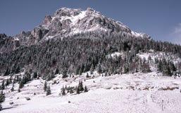 Stenigt berg med snö och is arkivfoton