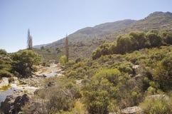 Stenigt flod- och berglandskap Arkivfoton
