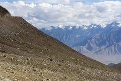 Stenigt gräs sluttar med en sikt av Himalayan berg i Ladakh, Indien, Asien Royaltyfria Foton