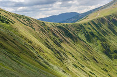 Stenigt kullelandskap i sommar Royaltyfri Fotografi