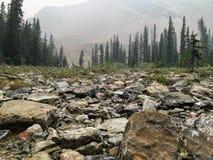Stenigt landskap som är högt i de kanadensiska steniga bergen på ett dimmigt och en smok arkivbilder