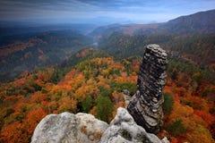 Stenigt landskap under höst Härligt landskap med stenen, skogen och dimma Solnedgång i den tjeckiska nationalparken Ceske Svycars royaltyfri bild