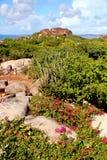 Stenigt segla utmed kusten i det karibiskt Arkivbilder