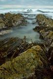 stenigt solnedgångvatten för strand Royaltyfri Bild