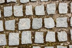 Stenkvarter med gräs Fotografering för Bildbyråer