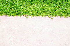 Stenlägga och gräsmatta Royaltyfria Foton