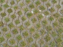 Stenlägga på grönt gräs Arkivbild