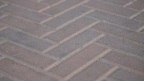 Stenläggningstenar i parkerar i rörelse Bakgrund av kul?ra stentegelplattor p? trottoaren Röda stenkvarter på en sommardag arkivfilmer