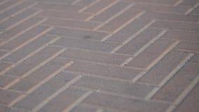 Stenläggningstenar i parkerar i rörelse Bakgrund av kul?ra stentegelplattor p? trottoaren Röda stenkvarter på en sommardag lager videofilmer