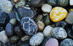 Stenlögn på havskusten Royaltyfri Fotografi
