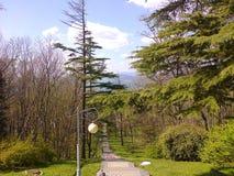 Stenlagd bana på den Black Sea kusten i April 2014 royaltyfri bild