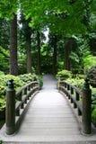 stenlagd bro Arkivfoton