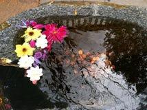Stenpöl med blommor och encentmynt Fotografering för Bildbyråer