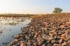 Stensida av floden royaltyfri fotografi