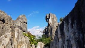 Stenskogen eller Shilinen, Yunnan, Kina arkivbild