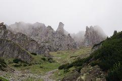 Stenspökar Narodny Tatransky parkerar tatry vysoke poland arkivfoto