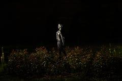 Stenstaty som omges av växter vid natt Fotografering för Bildbyråer