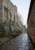 Stenstenläggningen på gatan och lyktan Royaltyfri Fotografi