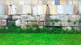 Stentegelstenvägg och grönt gräs Arkivbild